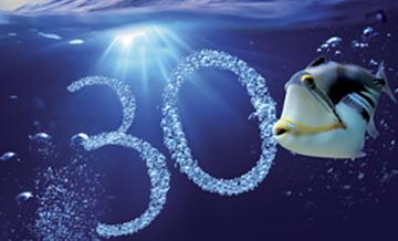 30 Buoni Motivi Per Rimotorizzarti