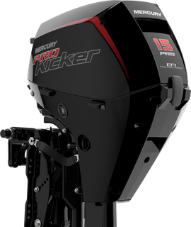 FourStroke 15hp ProKicker